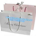 Fashion paper bags  for Christmas