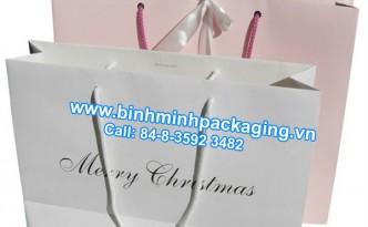 Fashion paper bags