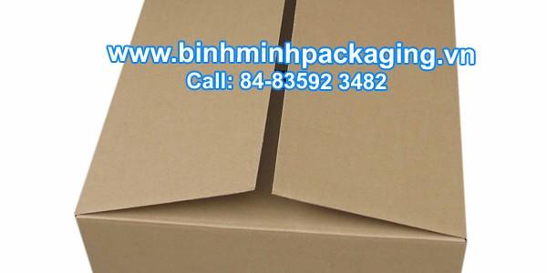 Customized Corrugated Carton
