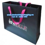 Custom printed apparel paper Bag