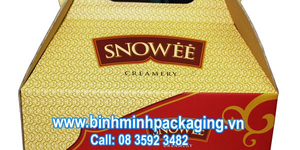 ice cream packaging box