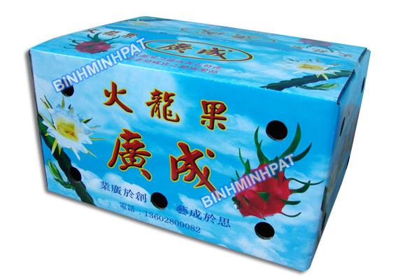 Carton boxes for fresh fruits hinh 4