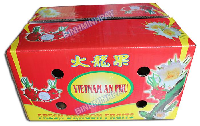 Carton boxes for fresh fruits hinh 6