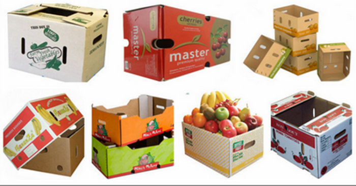 Corrugated Packing Carton Boxes for vegetable and fruit