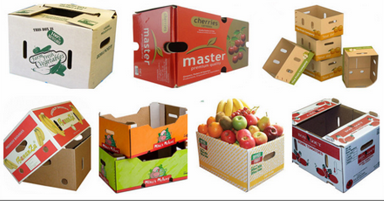 Vegetable and fresh fruit packaging boxes Wax Corrugated Carton box