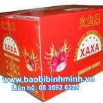 Waterproof Cartons For Export Packing Fruit