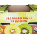 Kiwi Fruit Packaging Boxes