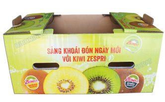 Kiwi Fruit Packaging Boxes -img01
