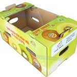 Kiwi Fruit Packaging Boxes -img02