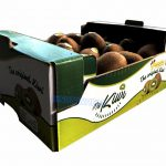 Kiwi Fruit Packaging Boxes -img05