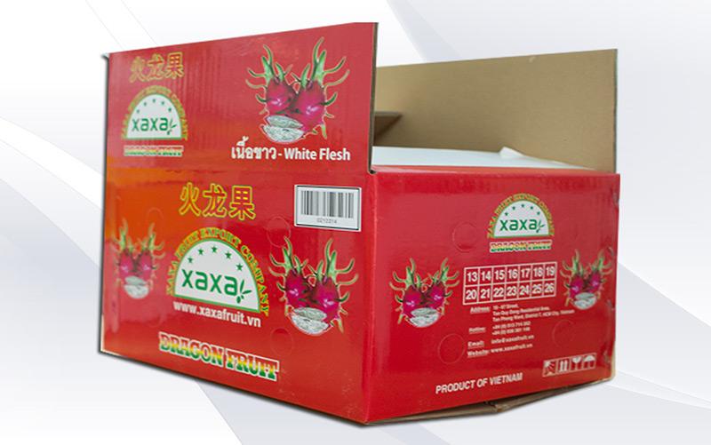 Dragon fruit packaging box