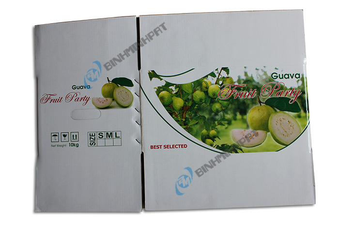 Guava Fruit Packaging Boxes - img 01