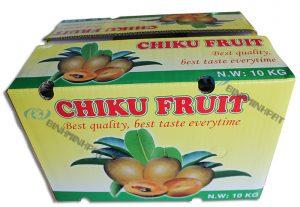 Chiku Fruit Packaging Boxes -img03