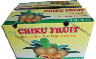 Chiku Fruit Packaging Boxes -img03