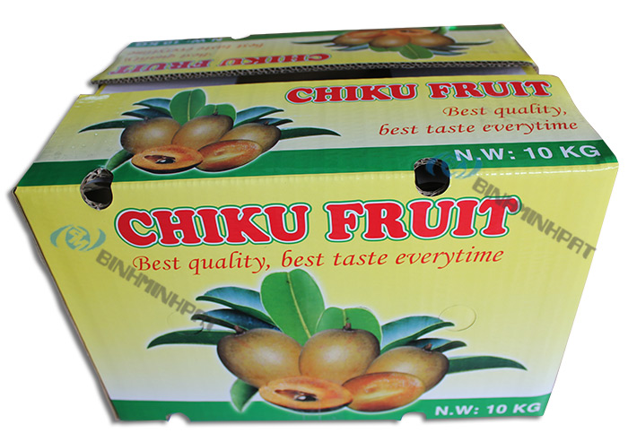 Chiku Fruit Packaging Boxes