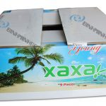 Coconut Fruit packaging boxes