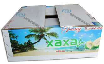 Coconut Fruit packaging boxes - img01