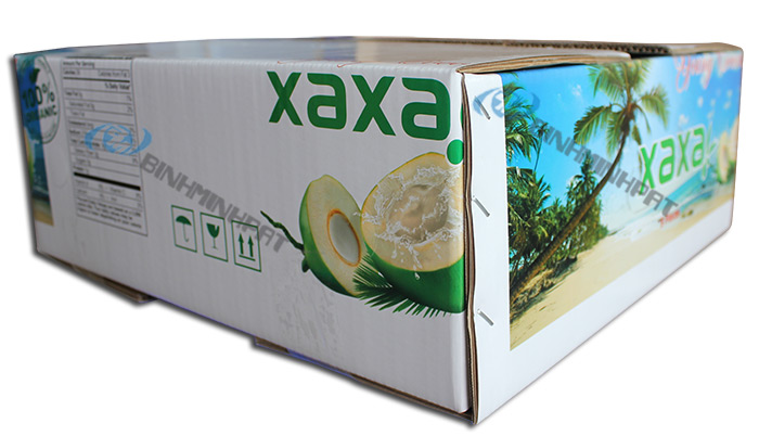 Coconut Fruit packaging boxes - img04