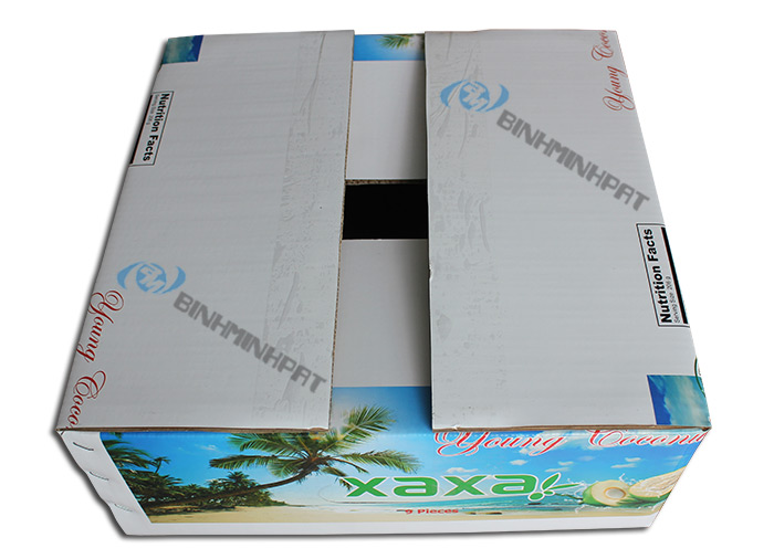 Coconut Fruit packaging boxes - img05