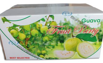 Guava Fruit Packaging Boxes
