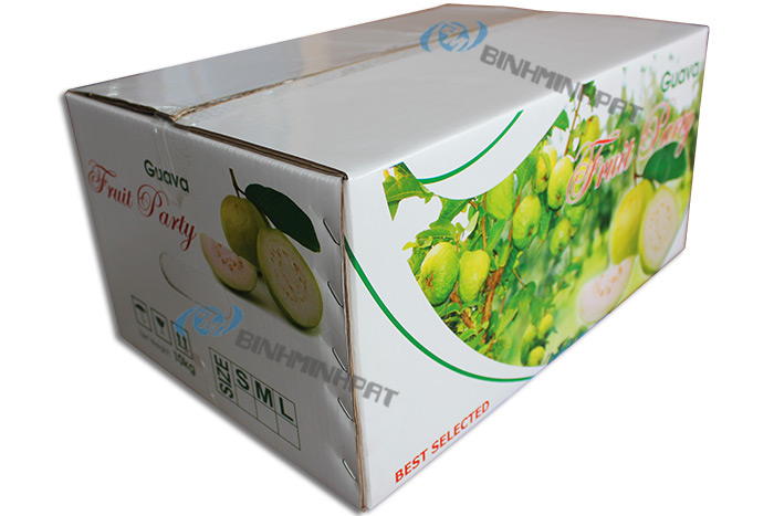 Guava Fruit Packaging Boxes - img 02
