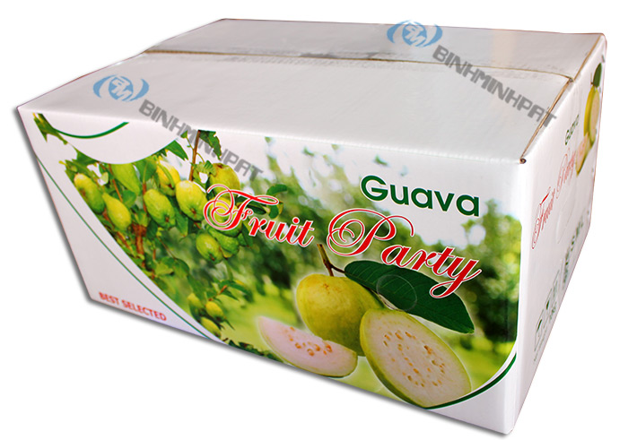 Guava Fruit Packaging Boxes - img03