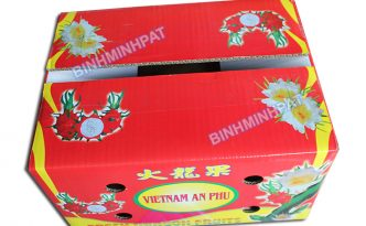 Dragon fruit packaging box - img 07