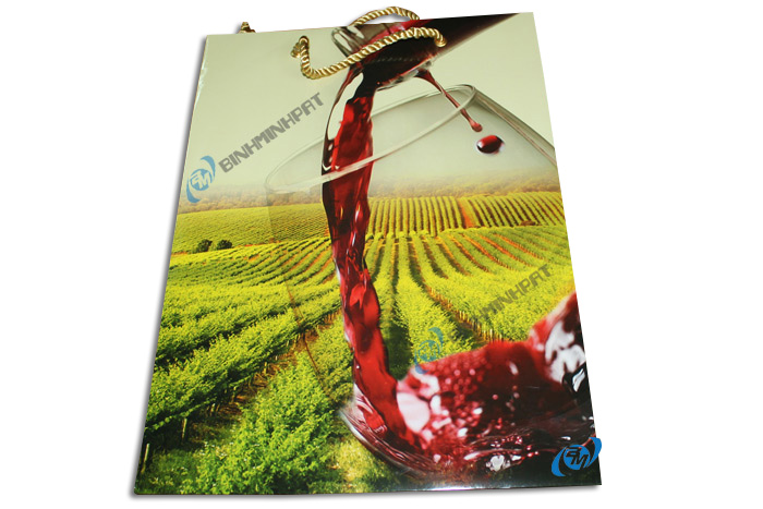 Paper Wine Bags with Handles - img04