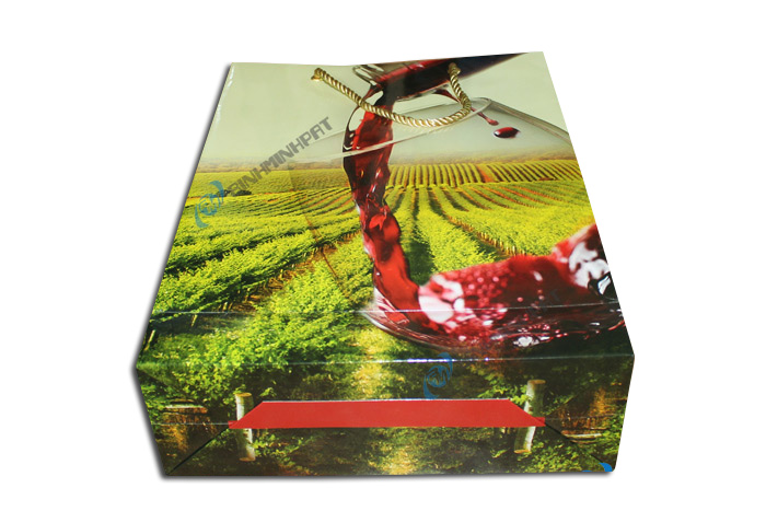 Paper Wine Bags with Handles - img06