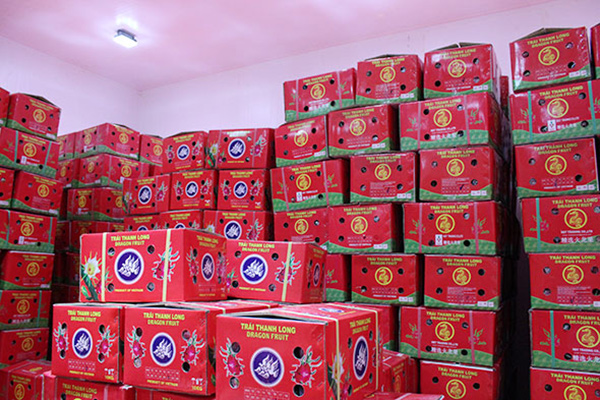 Fresh Dragon fruit packaging carton box - img-01