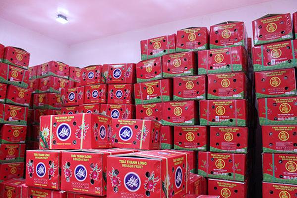 Fresh Dragon fruit packaging carton box - img-01