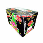 Vietnam Fresh Dragon Fruit Packaging Carton Box for Wholesale Sale