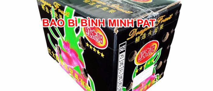 Vietnam Fresh Dragon Fruit Packaging Carton Box - IMG01
