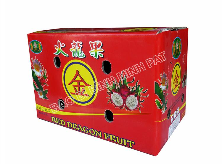 Fresh Dragon fruit packaging carton box - img-07