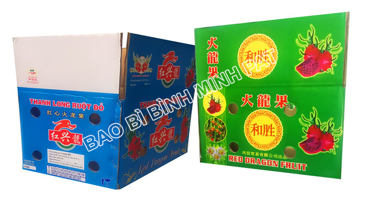 Fresh Dragon fruit packaging carton box - img-02