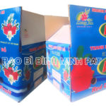 Fresh Dragon fruit packaging carton box