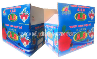 Fresh Dragon fruit packaging carton box - img-03