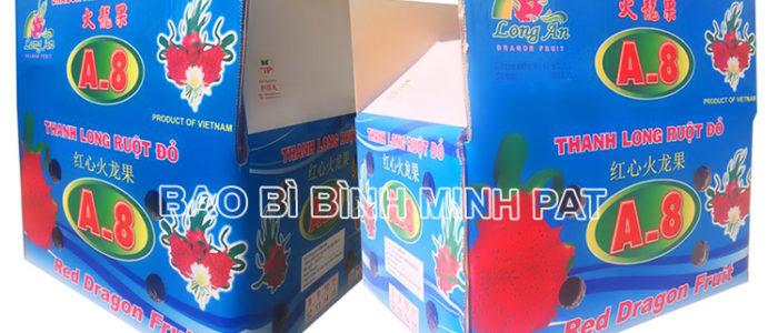 Fresh Dragon fruit packaging carton box - img-03