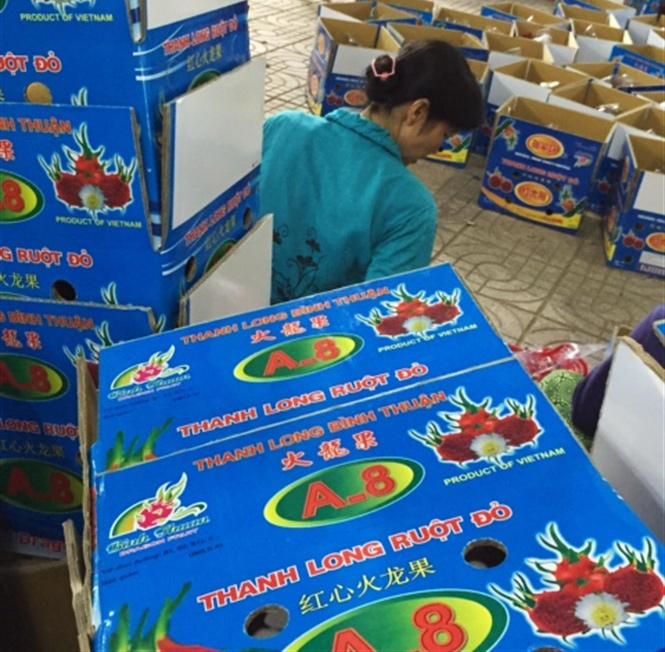 Fresh Dragon fruit packaging carton box - img-05