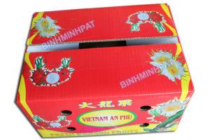 Waterproof corrugated cardboard boxes for fresh dragon fruit