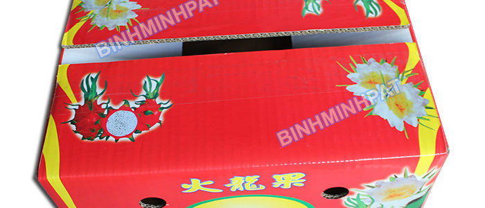 Waterproof corrugated cardboard boxes for fresh dragon fruit