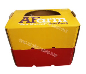 Grape packaging box - IMG05