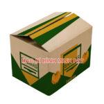 Flexo Printed Carton Box – The Best Manufacturer In Vietnam